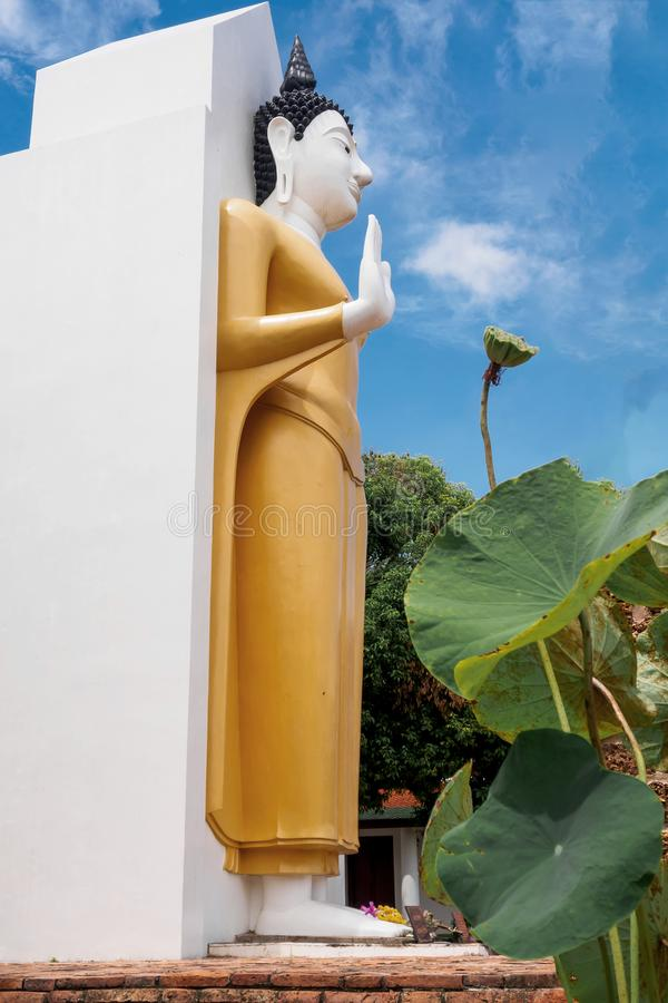 Staty för Phra Attharot anseendeBuddha, Phitsanulok landskap, Thailand royaltyfri fotografi