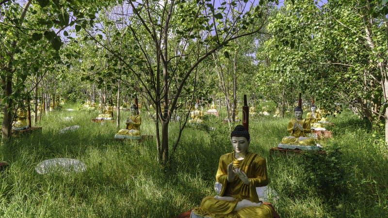 Statyer i skogen fotografering för bildbyråer