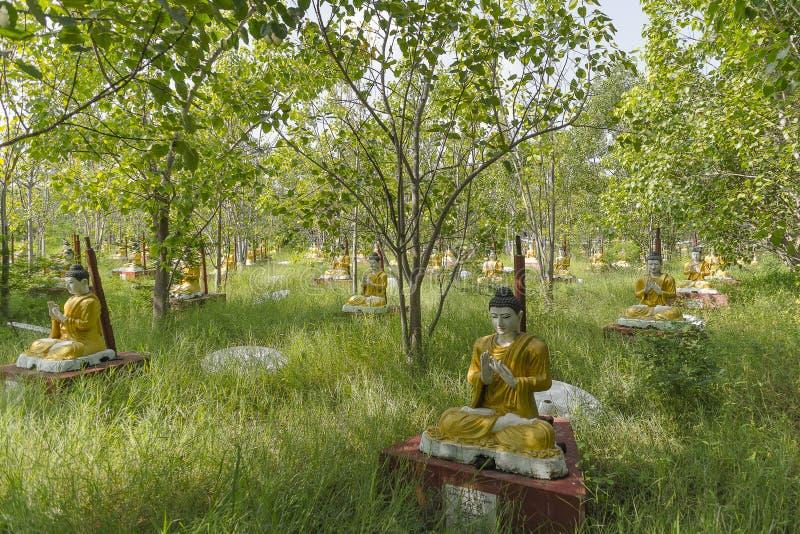 Statyer i skogen arkivbilder