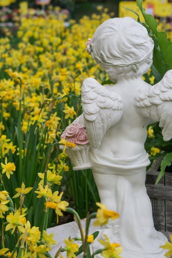 Statyn av det lilla barnet med ängelvingar, som vänder mot stora påskliljor för en gläntagulingpingstlilja, blommar royaltyfri bild