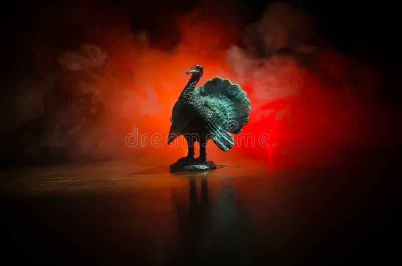Statyn av Turkiet Tom som svassar hans material med röda wattles och det blåa/vita huvudet på en rök, tonade mörk bakgrund Med to arkivbild