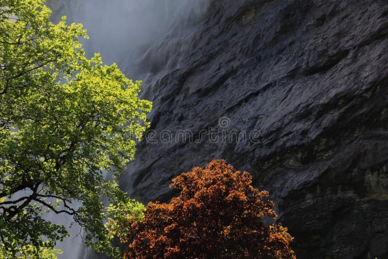 Staubbach Falls Mist royaltyfri fotografi