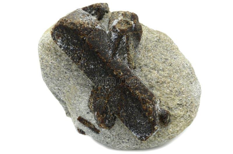 Staurolite - cruz feericamente imagem de stock royalty free