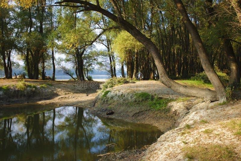 Stauwasser, die Donau-Ufer in Ungarn lizenzfreie stockbilder