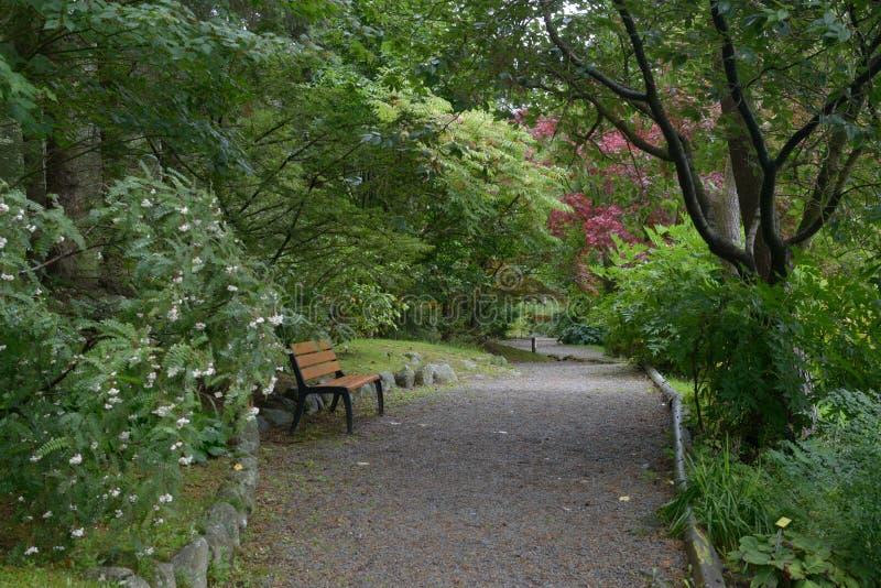 Stavanger ogród botaniczny obraz royalty free