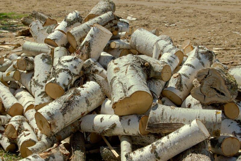 Staven voor brandhout van berk stock foto's