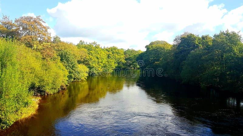 Staverton bridge River Dart Dartington Devon fotografia royalty free