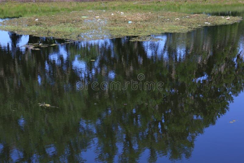 Staw Śmiecący z śmieci na górze wody fotografia stock