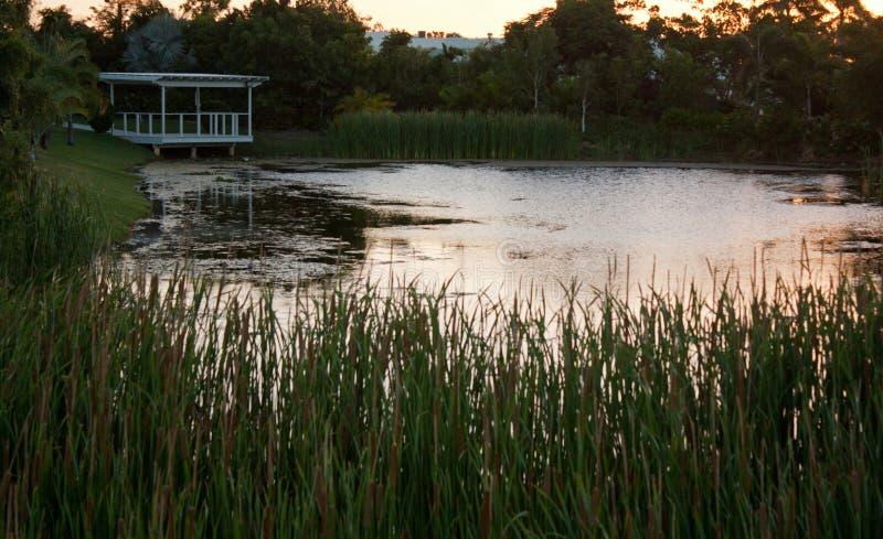 Staw i biały ogródu dom w Queensland, Australia obraz royalty free