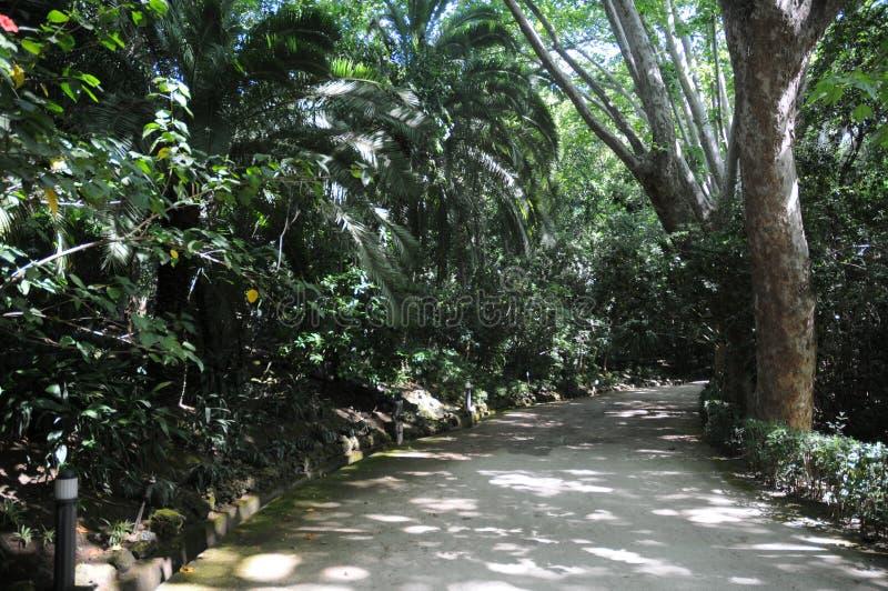 Staw i pawilon w Concepcion ogródzie botanicznym Malaga andalusia Hiszpania obraz royalty free