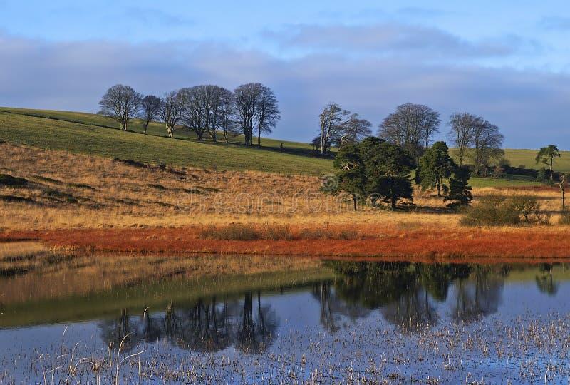 Download Staw krajobrazu obraz stock. Obraz złożonej z staw, wiejski - 135959