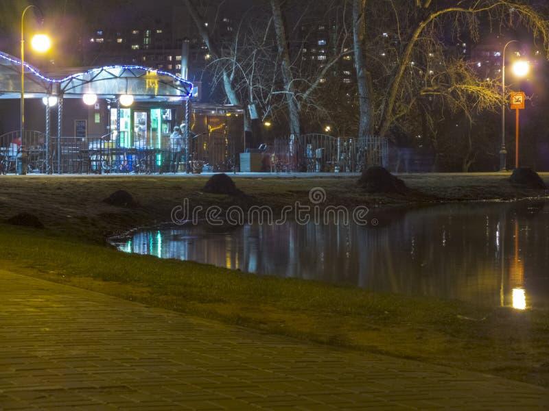 Staw w miasto parku przy nocą zdjęcia royalty free