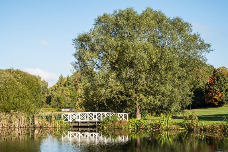 Download Staw W Parku Na Słonecznym Dniu Zdjęcie Stock - Obraz złożonej z natura, woda: 106902584