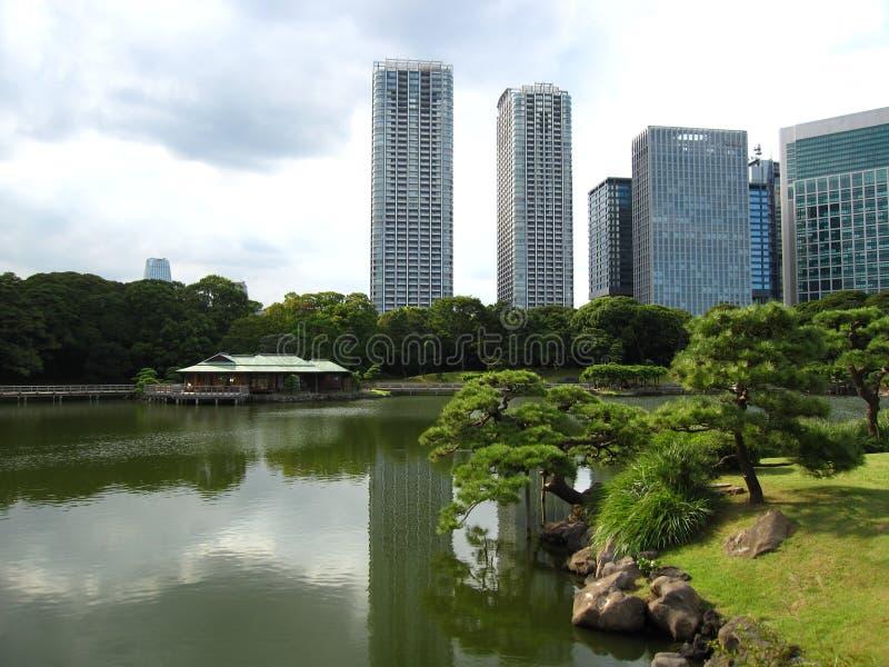Staw w tradycyjnym japończyka Tokio ogródzie obrazy royalty free