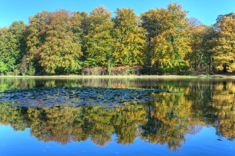 Staw z jesieni drzewami na Veluwe przy St. Hubertus Łowiecką stróżówką obraz royalty free