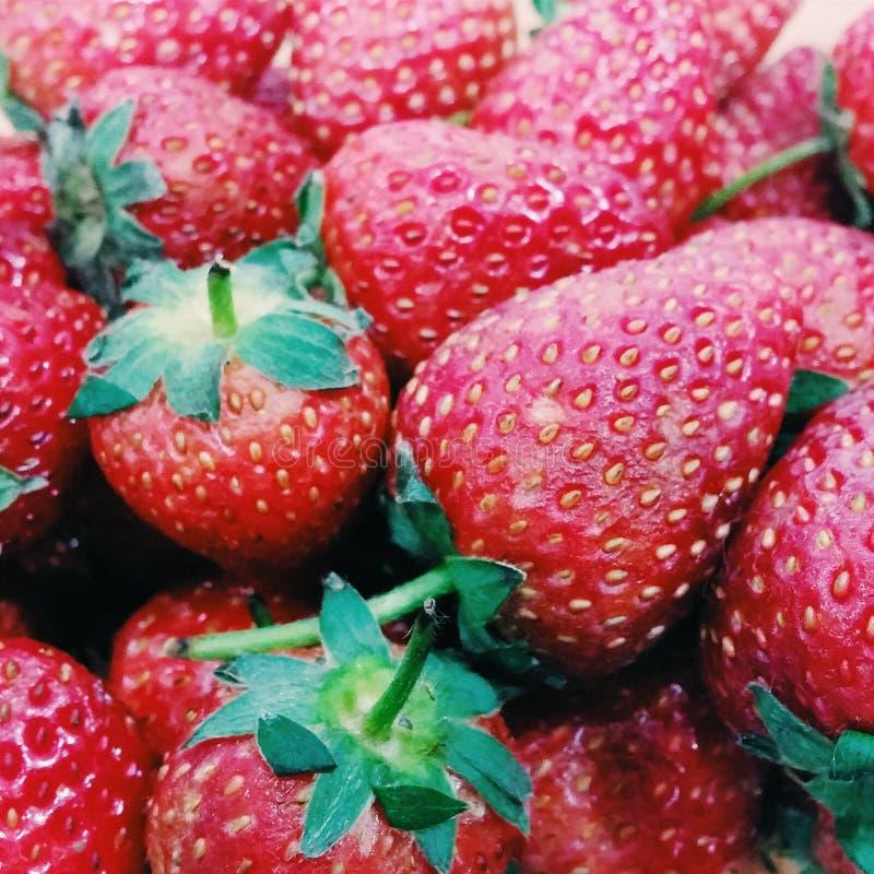 Stawberry στοκ εικόνες