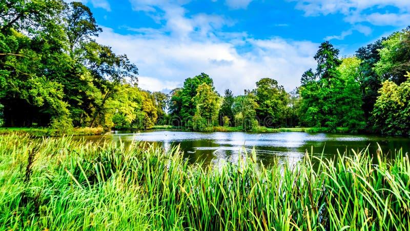 Stawy i jeziora w parkach otacza Grodowego De Haar obraz stock