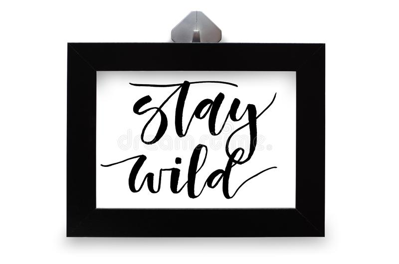 Stay wild. Handwritten text. Modern calligraphy. Inspirational q royalty free stock image
