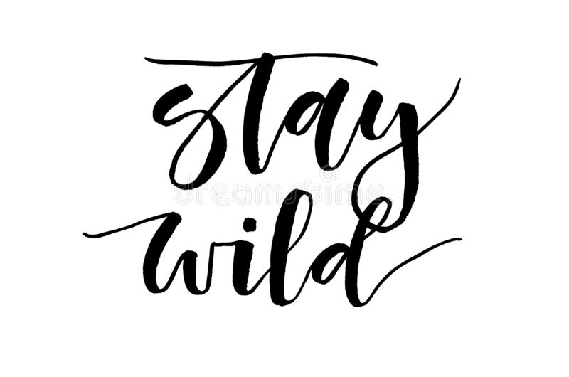 Stay wild. Inspirational quote. Handwritten text. Modern calligr vector illustration
