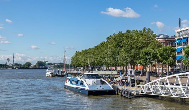 Stazione di Waterbus in fiume Mosa, Rotterdam, Paesi Bassi fotografia stock libera da diritti