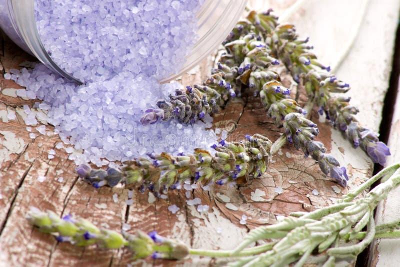 Download Stazione Termale Stabilita Della Lavanda Fotografia Stock - Immagine di trattamento, fiori: 7312744