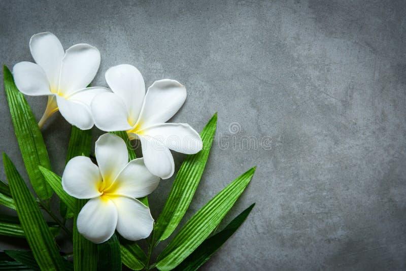 STAZIONE TERMALE tailandese La vista superiore della plumeria bianca fiorisce la regolazione per il trattamento di massaggio e si fotografia stock libera da diritti