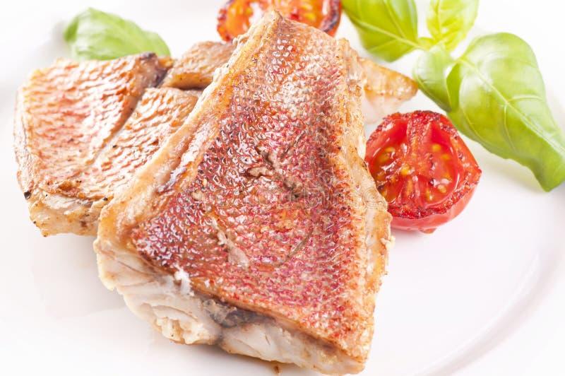 steak för röda snapper fotografering för bildbyråer