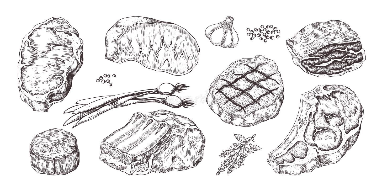 Steak. Vintage sketch with beef and pork chops ribs and fillet, butchery food products with garlic and pepper. Vector. Illustrations hand drawn fillet meat set royalty free illustration