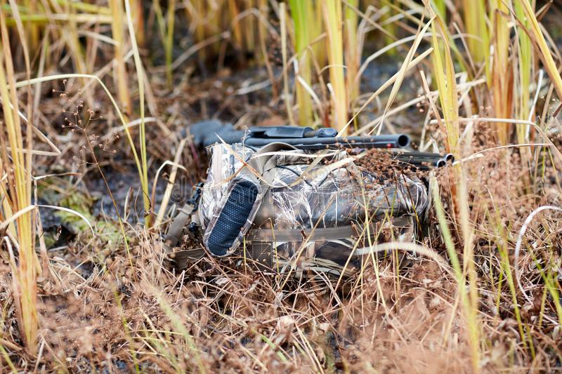 Stealthy duck hunter hidden among swamp plants royalty free stock photo