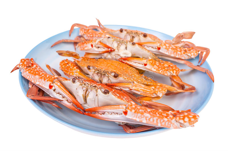 Steam food crab on dish royalty free stock photo