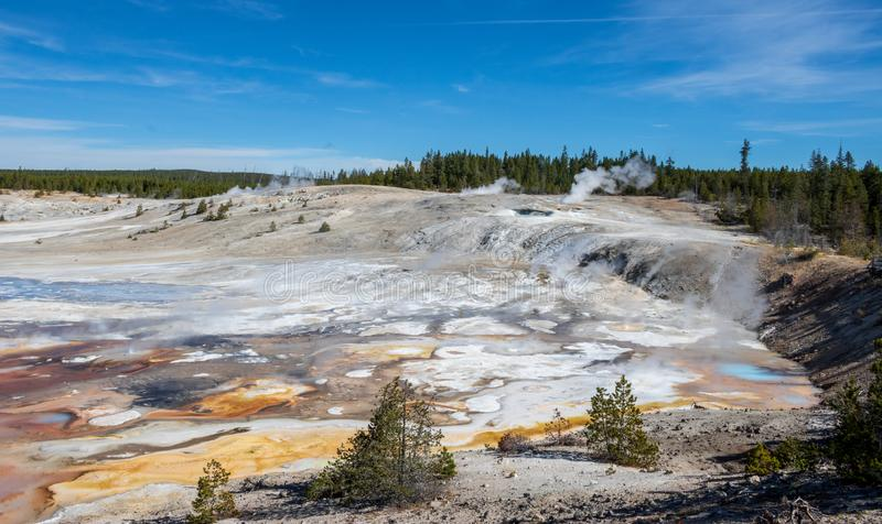 Steam rising above Porcelain Basin. Steam rises from the highest point in the Porcelain Basin in Yellowstone National Park royalty free stock image