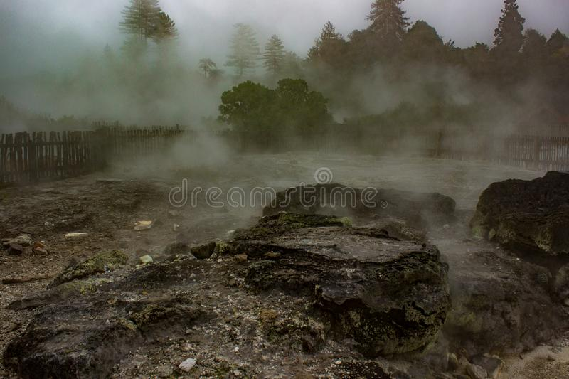 Steam rising from geothermal vents in Rotorua, NZ royalty free stock images
