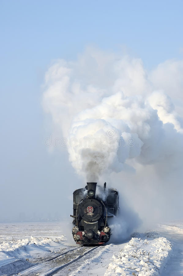 Free Steam Train Royalty Free Stock Photos - 12782368