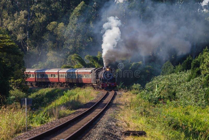 Steam Train Coaches landscape stock image