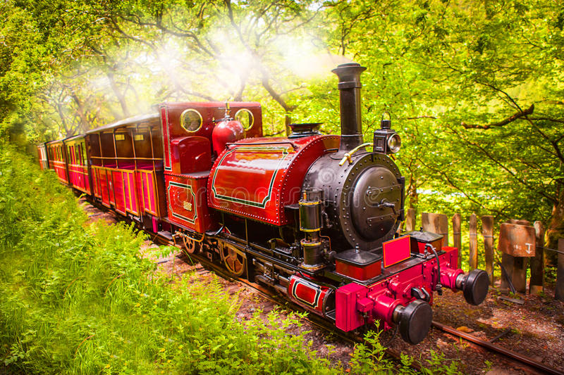 Steam train engine. Beautiful red steam train / railway engine passing through a lush green British forest