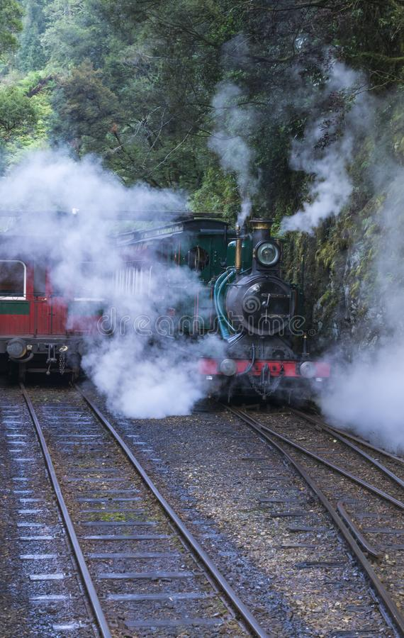 Steam train going back through rain forest royalty free stock images
