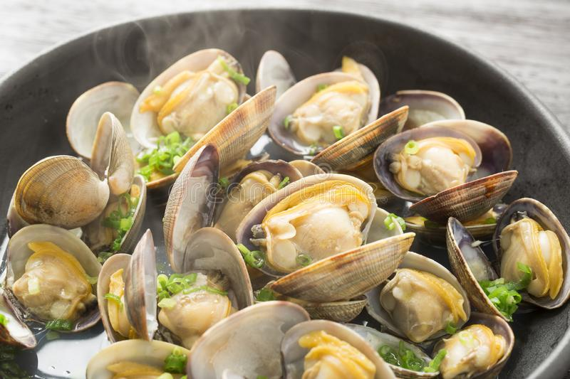 Steamed bivalve clams, Japanese food,. Clams from Aichi Prefecture royalty free stock photography