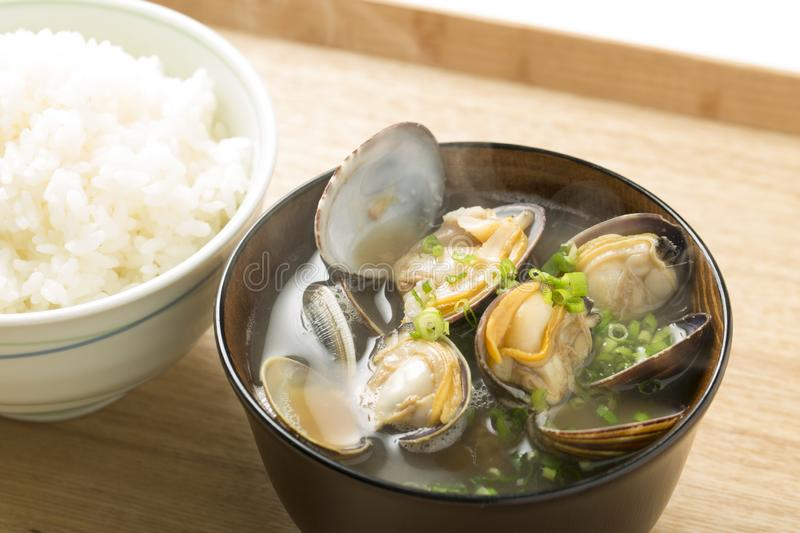 Steamed bivalve clams, Japanese food,. Clams from Aichi Prefecture stock photo