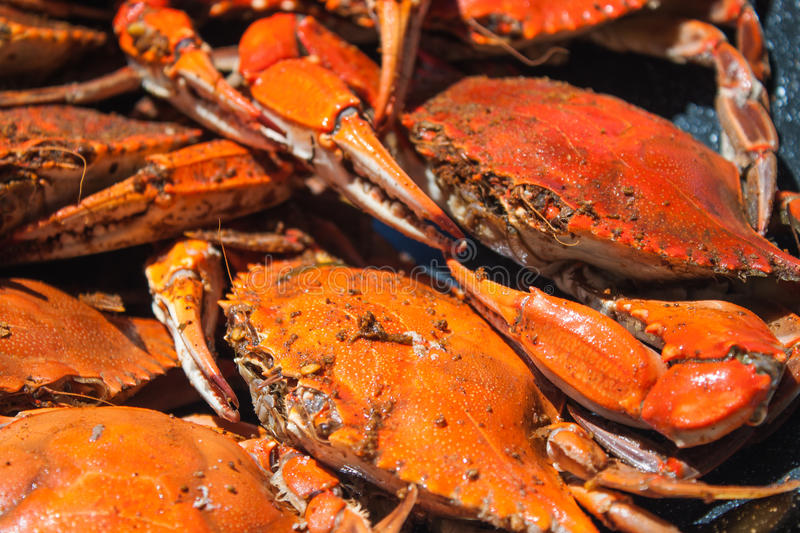 Steamed blue crabs from the Chesapeake bay stock photos