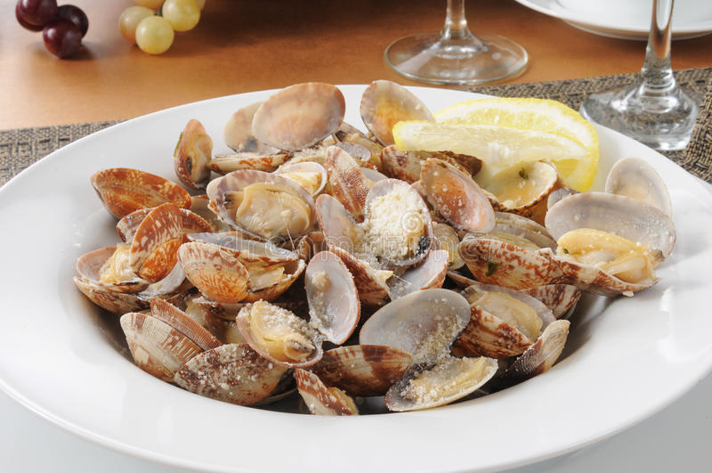 Steamed clams stock images