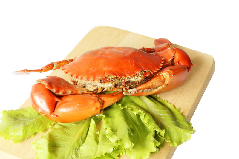 Steamed Crab stock photos