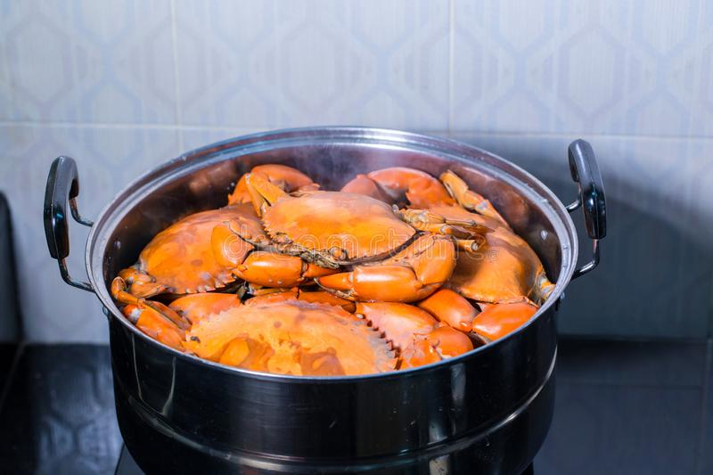 Steamed crab in pot. live crabs in a pot. steaming shanghai hairy crabs, chinese cuisine. royalty free stock photography