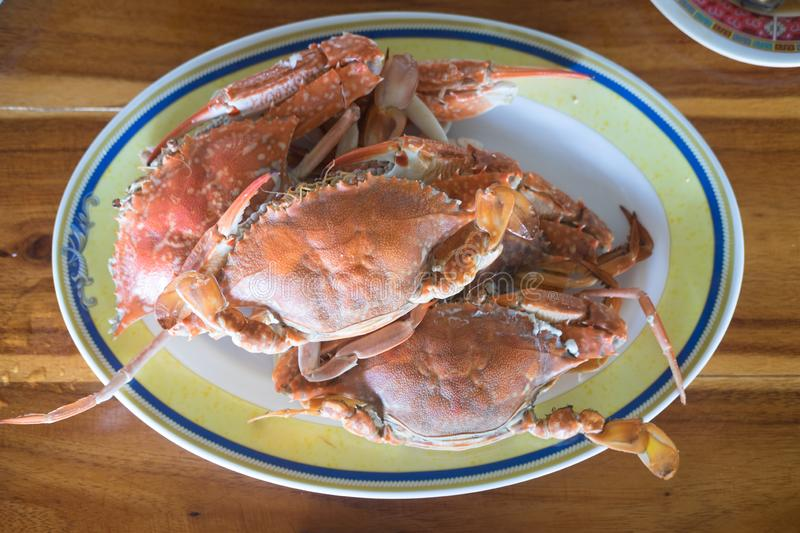 Steamed crab on dish royalty free stock photo