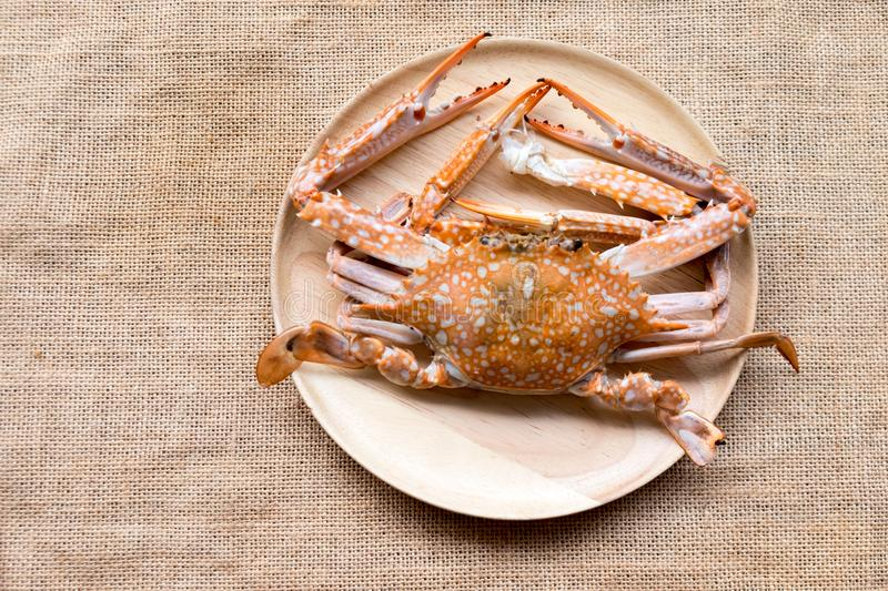 Steamed crab close up stock photos