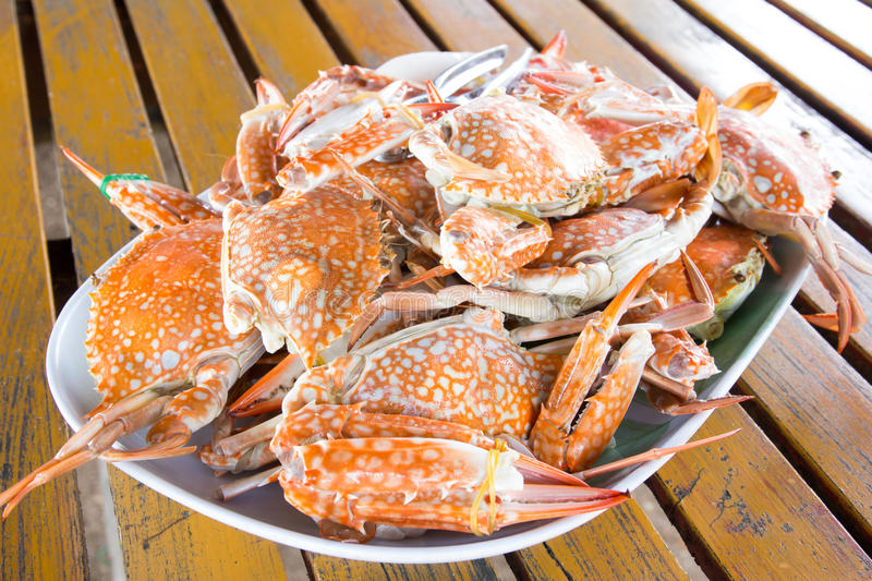 Steamed Crabs royalty free stock photography