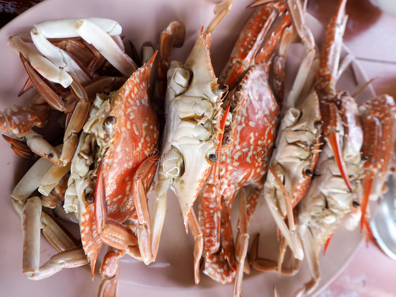 Steamed crabs seafood of Thailand stock photo