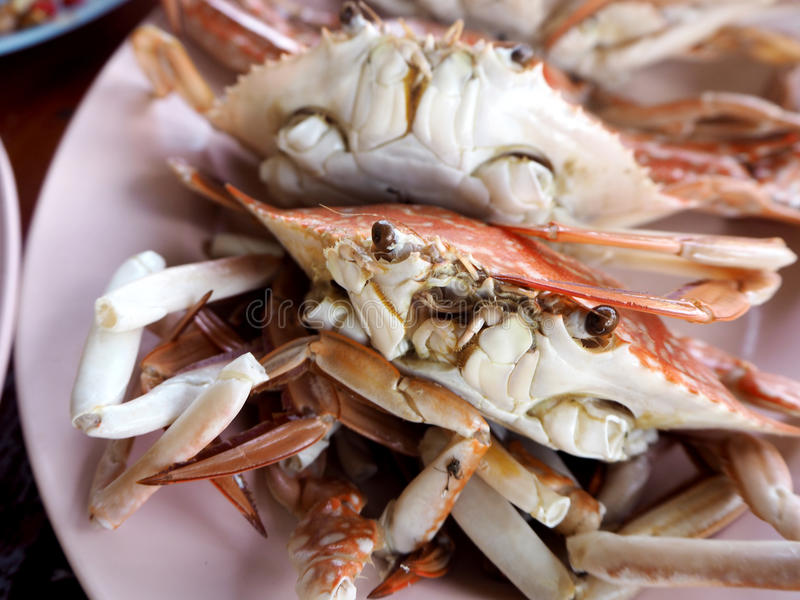 Steamed crabs Thai style seafood royalty free stock image
