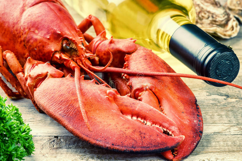 Steamed lobster with bottle of white wine stock photography