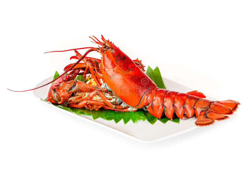 Steamed lobster chinese luxury seafood isolated on white royalty free stock image