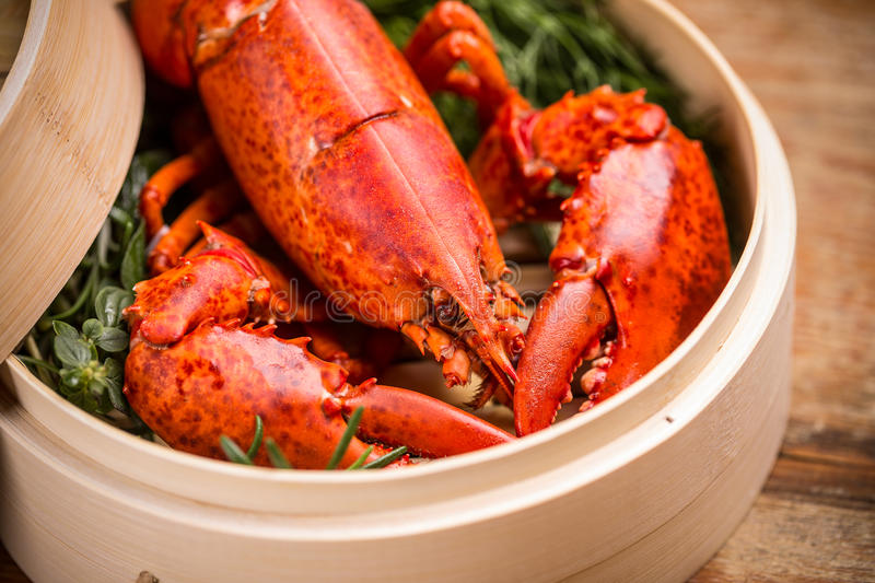 Steamed lobster. A delicious freshly steamed lobster royalty free stock photos